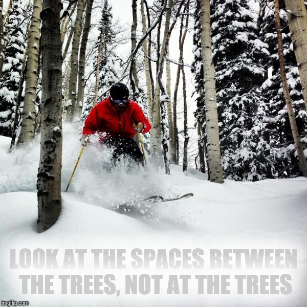 LOOK AT THE SPACES BETWEEN THE TREES, NOT AT THE TREES | made w/ Imgflip meme maker
