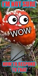 WoW Face Shroom | I'M NOT SURE HOW TO RESPOND TO THAT | image tagged in wow face shroom | made w/ Imgflip meme maker