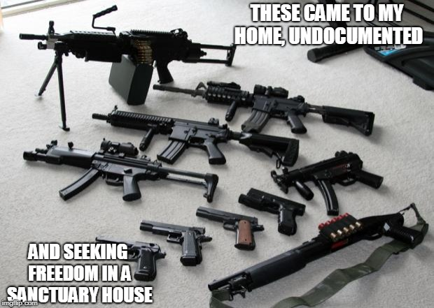 guns | THESE CAME TO MY HOME, UNDOCUMENTED AND SEEKING FREEDOM IN A SANCTUARY HOUSE | image tagged in guns | made w/ Imgflip meme maker