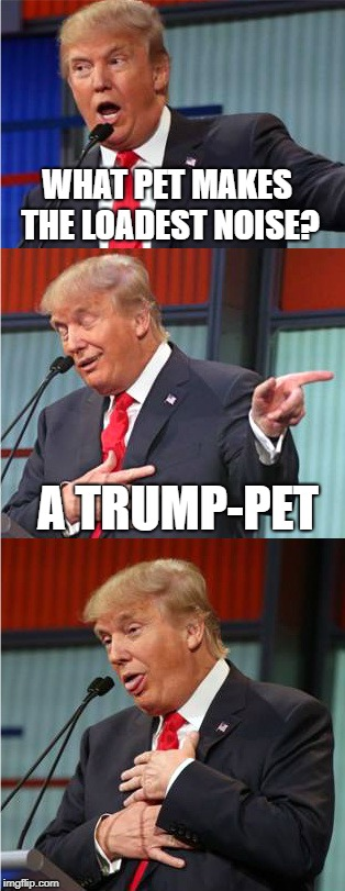Bad Pun Trump | WHAT PET MAKES THE LOADEST NOISE? A TRUMP-PET | image tagged in bad pun trump | made w/ Imgflip meme maker