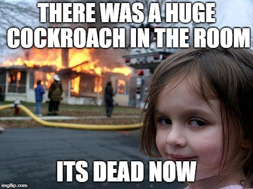 Disaster Girl Meme | THERE WAS A HUGE COCKROACH IN THE ROOM ITS DEAD NOW | image tagged in memes,disaster girl | made w/ Imgflip meme maker