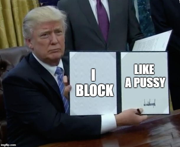 Trump the #1 Pussy Blocker on Twitter | I BLOCK LIKE A PUSSY | image tagged in memes,trump bill signing,donald drumpf,twitter,block | made w/ Imgflip meme maker