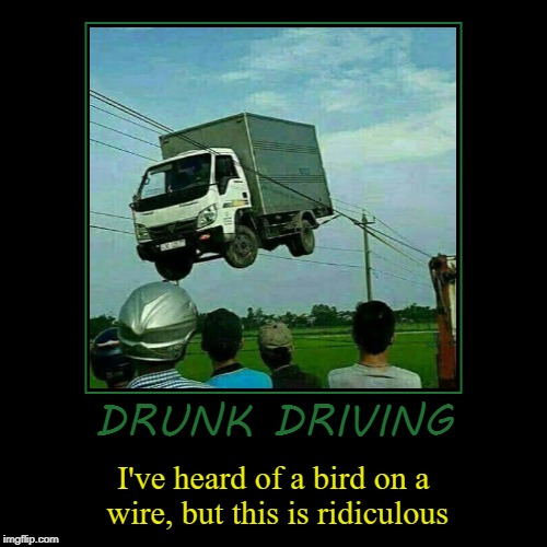 DRUNK DRIVING | I've heard of a bird on a wire, but this is ridiculous | image tagged in funny,demotivationals | made w/ Imgflip demotivational maker