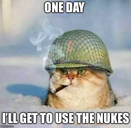 War Cat | ONE DAY I'LL GET TO USE THE NUKES | image tagged in war cat | made w/ Imgflip meme maker