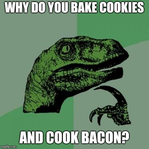 Philosoraptor Meme | WHY DO YOU BAKE COOKIES AND COOK BACON? | image tagged in memes,philosoraptor | made w/ Imgflip meme maker