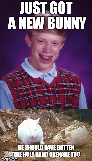JUST GOT A NEW BUNNY HE SHOULD HAVE GOTTEN THE HOLY HAND GRENADE TOO | image tagged in bad luck brian,killer bunny,monty python and the holy grail | made w/ Imgflip meme maker