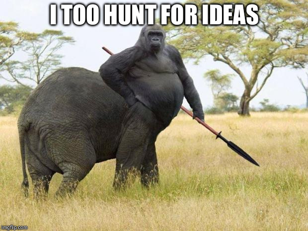 da fuq? | I TOO HUNT FOR IDEAS | image tagged in da fuq | made w/ Imgflip meme maker