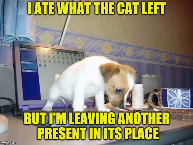 I ATE WHAT THE CAT LEFT BUT I'M LEAVING ANOTHER PRESENT IN ITS PLACE | made w/ Imgflip meme maker