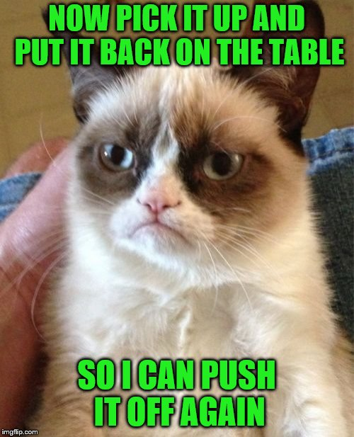 Grumpy Cat Meme | NOW PICK IT UP AND PUT IT BACK ON THE TABLE SO I CAN PUSH IT OFF AGAIN | image tagged in memes,grumpy cat | made w/ Imgflip meme maker