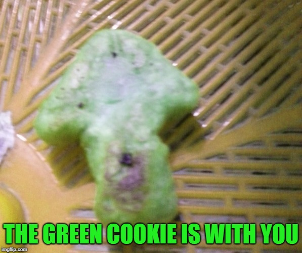 Upvote cookie | THE GREEN COOKIE IS WITH YOU | image tagged in upvote cookie | made w/ Imgflip meme maker