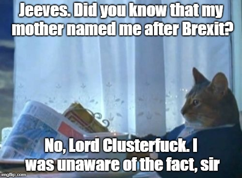I Should Buy A Boat Cat Meme | Jeeves. Did you know that my mother named me after Brexit? No, Lord Clusterf**k. I was unaware of the fact, sir | image tagged in memes,i should buy a boat cat | made w/ Imgflip meme maker