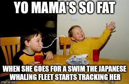 Yo Mamas So Fat Meme | YO MAMA'S SO FAT WHEN SHE GOES FOR A SWIM THE JAPANESE WHALING FLEET STARTS TRACKING HER | image tagged in memes,yo mamas so fat | made w/ Imgflip meme maker