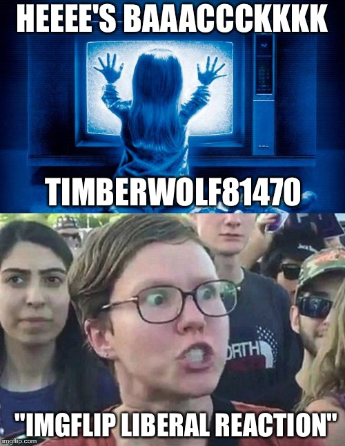 "HEEEE'S BAAACCCKKKK TIMBERWOLF81470 ""IMGFLIP LIBERAL REACTION"" 