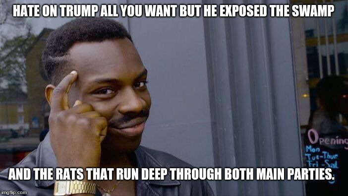 Roll Safe Think About It Meme | HATE ON TRUMP ALL YOU WANT BUT HE EXPOSED THE SWAMP AND THE RATS THAT RUN DEEP THROUGH BOTH MAIN PARTIES. | image tagged in memes,roll safe think about it | made w/ Imgflip meme maker