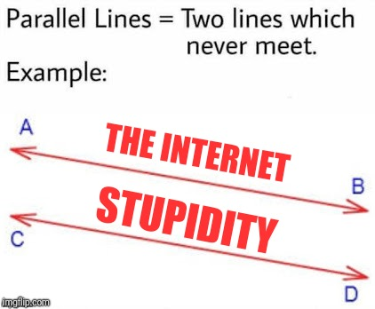 THE INTERNET STUPIDITY | image tagged in parellel lines | made w/ Imgflip meme maker