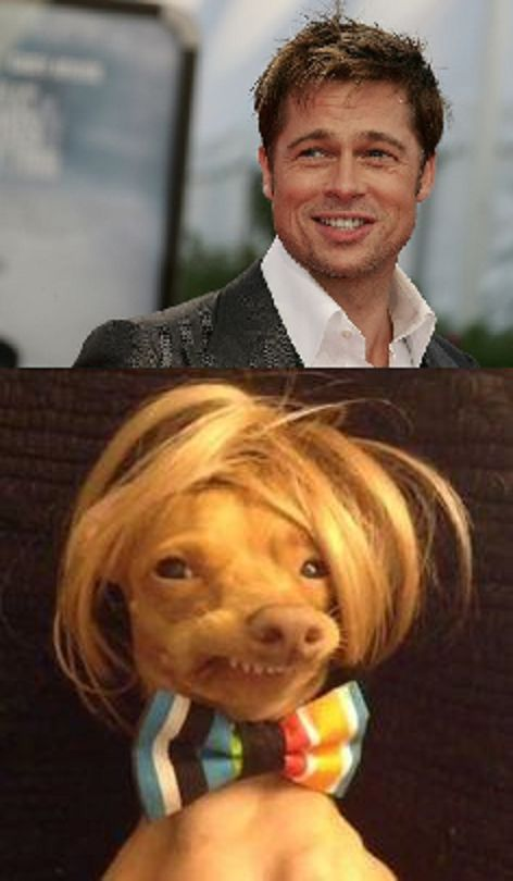 Brad Pitt and dog smiling Blank Meme Template