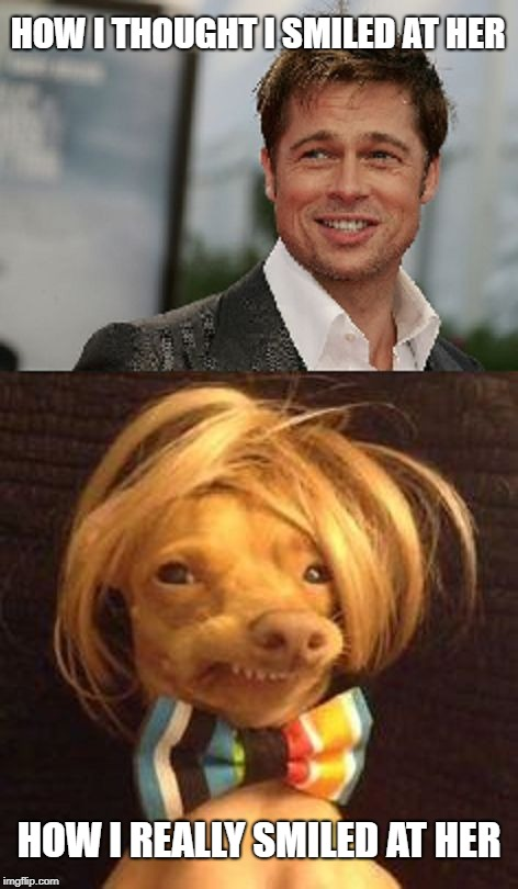 Brad Pitt and dog smiling | HOW I THOUGHT I SMILED AT HER HOW I REALLY SMILED AT HER | image tagged in brad pitt and dog smiling | made w/ Imgflip meme maker