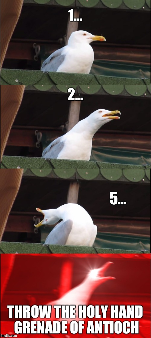 Inhaling Seagull Meme | 1... 2... 5... THROW THE HOLY HAND GRENADE OF ANTIOCH | image tagged in memes,inhaling seagull | made w/ Imgflip meme maker