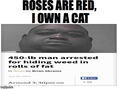 Roses are red... | ROSES ARE RED, I OWN A CAT | image tagged in memes,funny,dank memes,roses are red,news | made w/ Imgflip meme maker