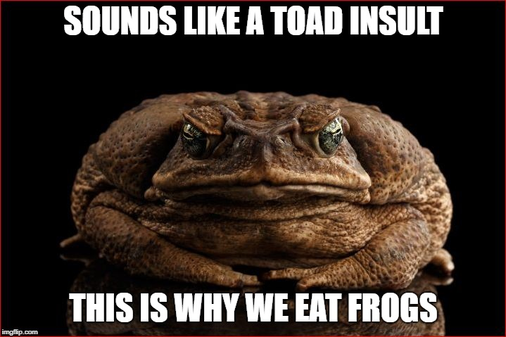 SOUNDS LIKE A TOAD INSULT THIS IS WHY WE EAT FROGS | made w/ Imgflip meme maker