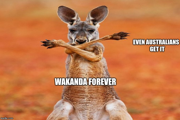 Do you want a baby kangaroo | WAKANDA FOREVER EVEN AUSTRALIANS  GET IT | image tagged in wakandaustralian | made w/ Imgflip meme maker