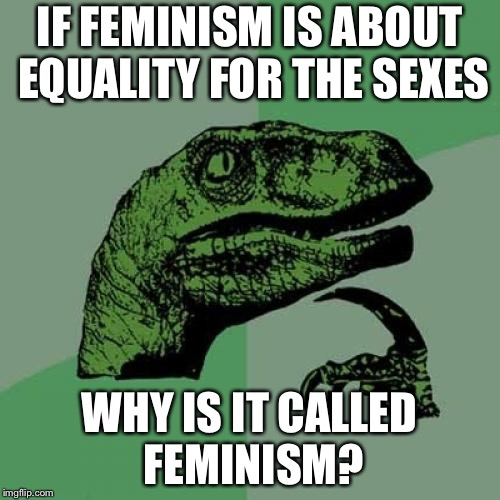 Philosoraptor Meme | IF FEMINISM IS ABOUT EQUALITY FOR THE SEXES WHY IS IT CALLED FEMINISM? | image tagged in memes,philosoraptor | made w/ Imgflip meme maker