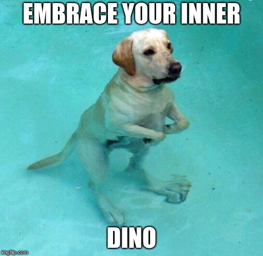 Doggosaurus | EMBRACE YOUR INNER DINO | image tagged in doggo,dino,funny | made w/ Imgflip meme maker