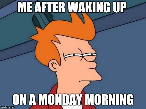Futurama Fry | ME AFTER WAKING UP ON A MONDAY MORNING | image tagged in memes,futurama fry | made w/ Imgflip meme maker