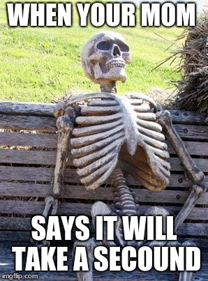 Waiting Skeleton Meme | WHEN YOUR MOM SAYS IT WILL TAKE A SECOUND | image tagged in memes,waiting skeleton | made w/ Imgflip meme maker