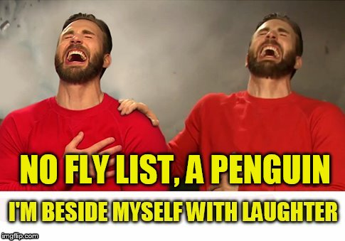 NO FLY LIST, A PENGUIN | made w/ Imgflip meme maker
