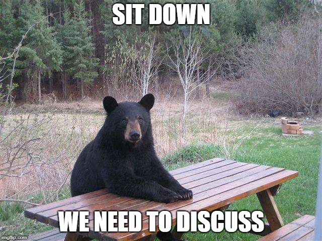 Bear at Picnic Table | SIT DOWN WE NEED TO DISCUSS | image tagged in bear at picnic table | made w/ Imgflip meme maker