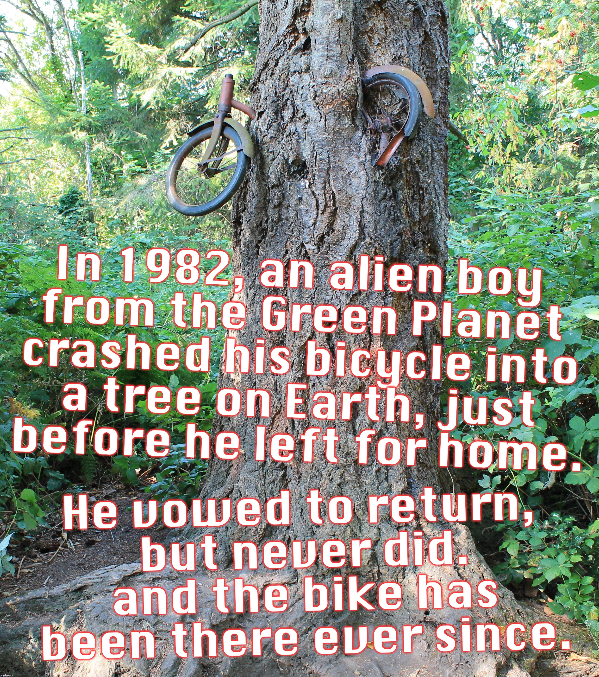 if you build a hoax, they will believe. | In 1982, an alien boy from the Green Planet crashed his bicycle into a tree on Earth, just before he left for home. He vowed to return, but  | image tagged in extraterrestrial,bicycle,tree | made w/ Imgflip meme maker