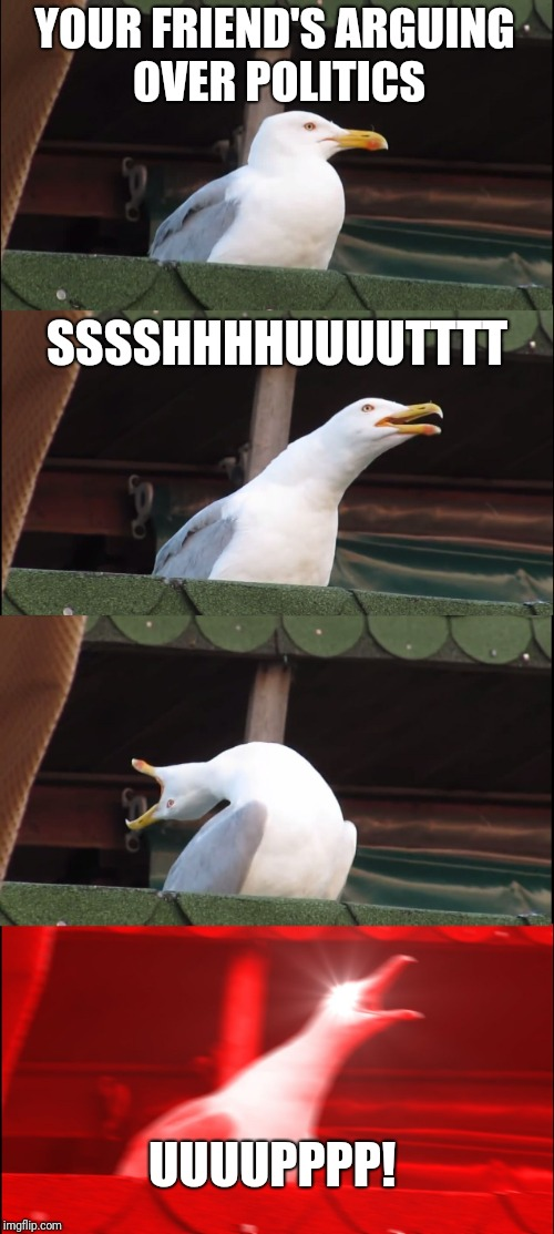 Inhaling Seagull Meme | YOUR FRIEND'S ARGUING OVER POLITICS SSSSHHHHUUUUTTTT UUUUPPPP! | image tagged in memes,inhaling seagull | made w/ Imgflip meme maker