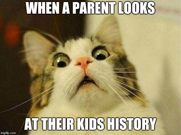 Scared Cat Meme | WHEN A PARENT LOOKS AT THEIR KIDS HISTORY | image tagged in memes,scared cat | made w/ Imgflip meme maker