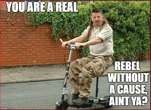 YOU ARE A REAL REBEL WITHOUT A CAUSE, AINT YA? | made w/ Imgflip meme maker