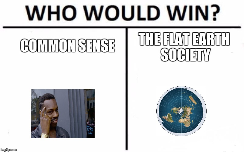 Who Would Win? Meme | COMMON SENSE THE FLAT EARTH SOCIETY | image tagged in memes,who would win | made w/ Imgflip meme maker