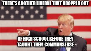 THERE'S ANOTHER LIBERAL THAT DROPPED OUT OF HIGH SCHOOL BEFORE THEY TAUGHT THEM COMMONSENSE | image tagged in trump | made w/ Imgflip meme maker