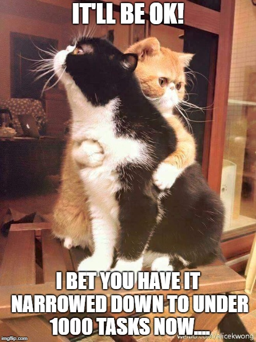 cats hugging | IT'LL BE OK! I BET YOU HAVE IT NARROWED DOWN TO UNDER 1000 TASKS NOW.... | image tagged in cats hugging | made w/ Imgflip meme maker