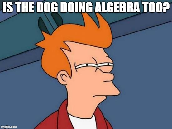 Futurama Fry Meme | IS THE DOG DOING ALGEBRA TOO? | image tagged in memes,futurama fry | made w/ Imgflip meme maker