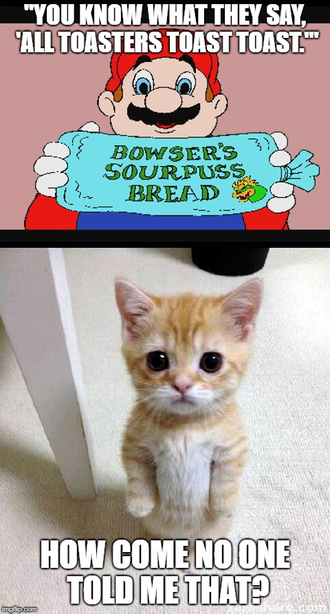 "They never said that. | ""YOU KNOW WHAT THEY SAY, 'ALL TOASTERS TOAST TOAST.'"" HOW COME NO ONE TOLD ME THAT? 