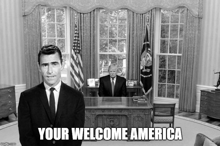 YOUR WELCOME AMERICA | image tagged in president trump,you're welcome | made w/ Imgflip meme maker