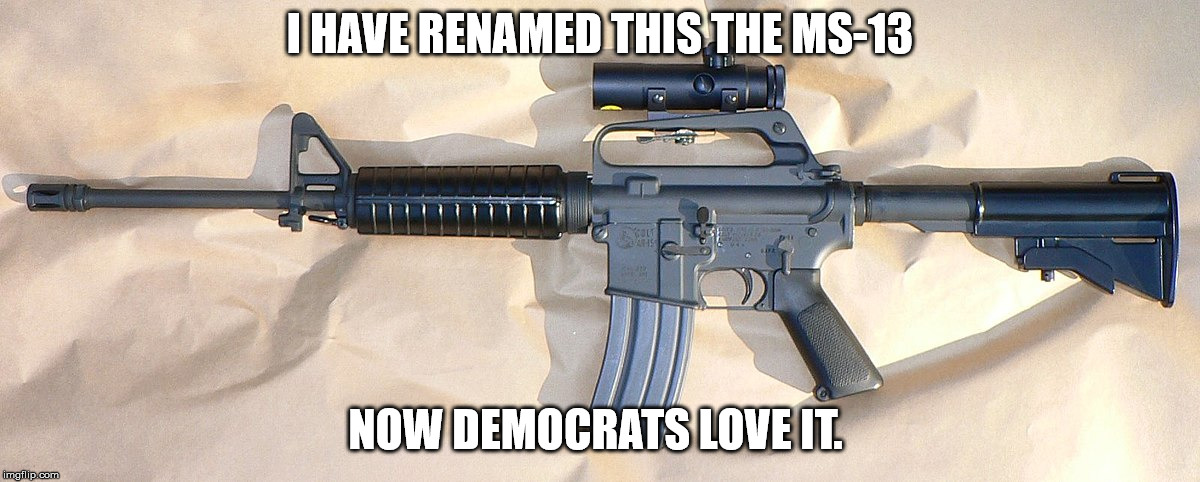 New ar-Ms-13  | I HAVE RENAMED THIS THE MS-13 NOW DEMOCRATS LOVE IT. | image tagged in guns,gun control,gang,democrats,nra,liberal logic | made w/ Imgflip meme maker