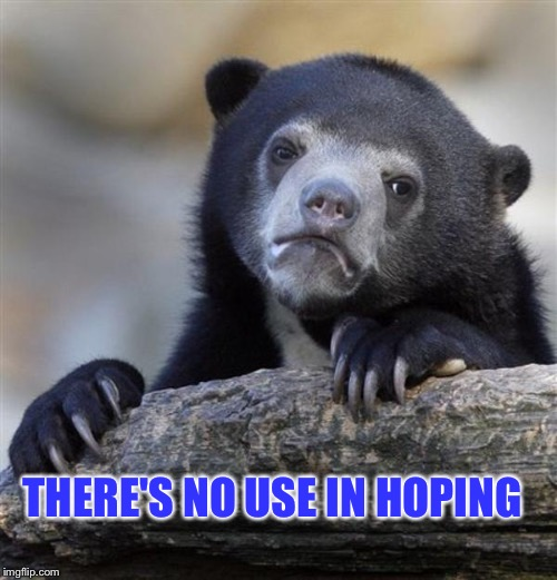 sad bear | THERE'S NO USE IN HOPING | image tagged in sad bear | made w/ Imgflip meme maker