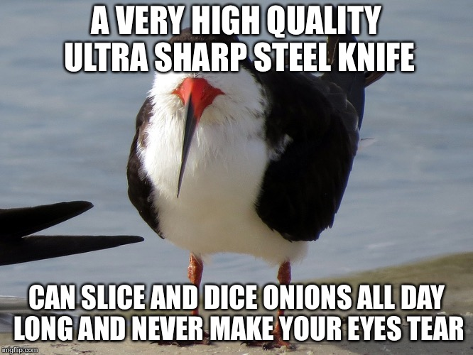 Even Less Popular Opinion Bird | A VERY HIGH QUALITY ULTRA SHARP STEEL KNIFE CAN SLICE AND DICE ONIONS ALL DAY LONG AND NEVER MAKE YOUR EYES TEAR | image tagged in even less popular opinion bird | made w/ Imgflip meme maker