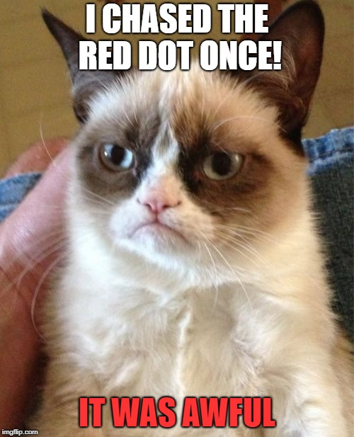 Grumpy Cat Meme | I CHASED THE RED DOT ONCE! IT WAS AWFUL | image tagged in memes,grumpy cat | made w/ Imgflip meme maker
