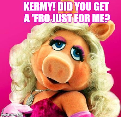 KERMY! DID YOU GET A 'FRO JUST FOR ME? | made w/ Imgflip meme maker