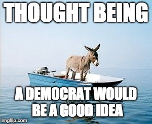 DONKEY ON A BOAT | THOUGHT BEING A DEMOCRAT WOULD BE A GOOD IDEA | image tagged in donkey on a boat | made w/ Imgflip meme maker