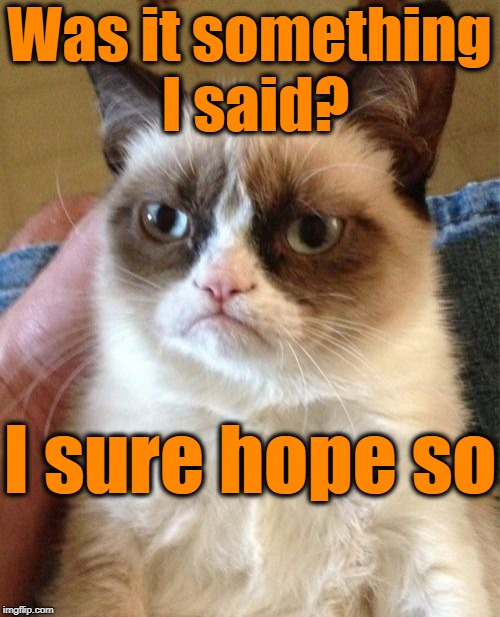 Grumpy Cat Meme | Was it something I said? I sure hope so | image tagged in memes,grumpy cat | made w/ Imgflip meme maker