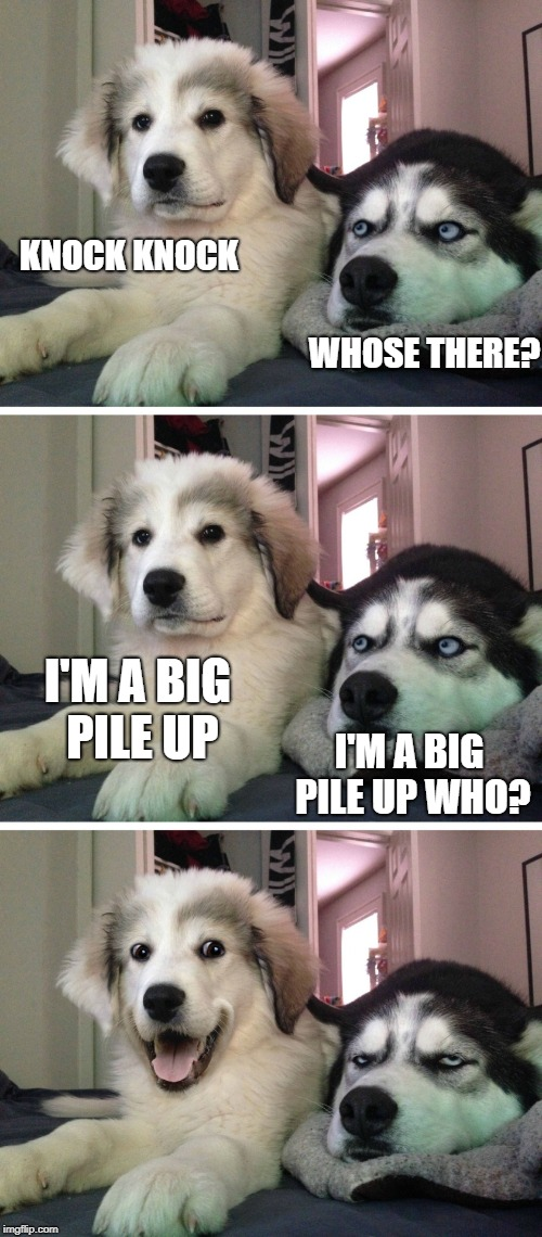 Bad pun dogs | KNOCK KNOCK WHOSE THERE? I'M A BIG PILE UP I'M A BIG PILE UP WHO? | image tagged in bad pun dogs | made w/ Imgflip meme maker