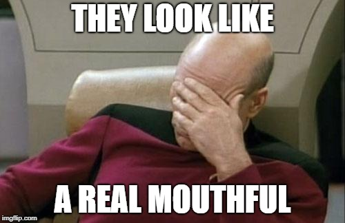 Captain Picard Facepalm Meme | THEY LOOK LIKE A REAL MOUTHFUL | image tagged in memes,captain picard facepalm | made w/ Imgflip meme maker